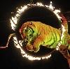 Цирки в Кимовске
